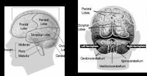 Eetstoornissen-weg-met-hypnose