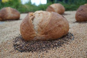 balans vinden en bewaren